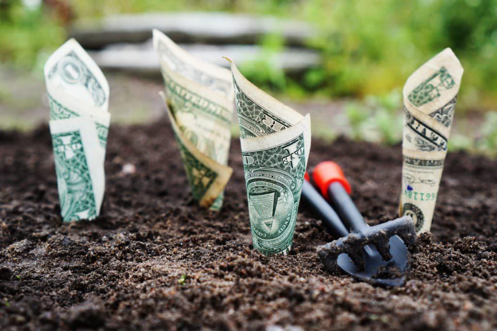 dollars-in-the-gorund